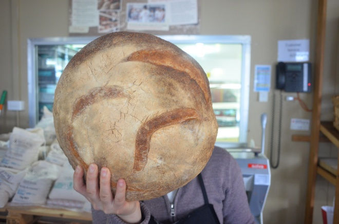 The giant loaves of sour dough in perspective - Thanks Yvonne!
